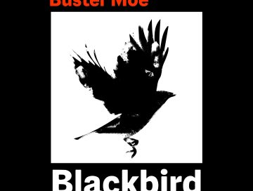 blackbird - buster moe - indie - indie music - indie pop - indie folk - Sweden - new music - music blog - wolf in a suit - wolfinasuit