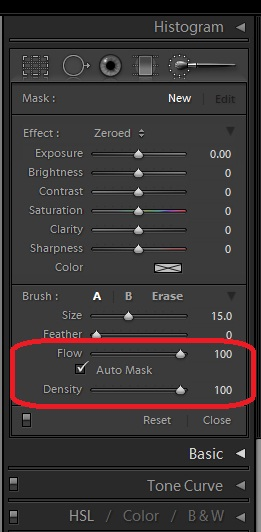 Adjustment Brush Tools