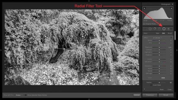 Radial Filter - 3