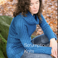 Scrumptious Knits - Carol Feller