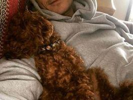 Орландо Блум хранит дома скелет своей собаки