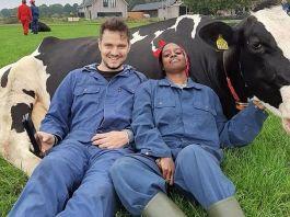 Общение с коровами - новый способ борьбы со стрессом