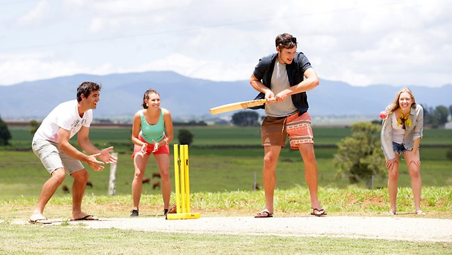 413967-backyard-cricket