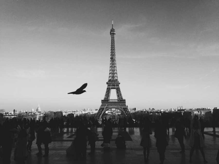 black-and-white-city-bird-people- romantic
