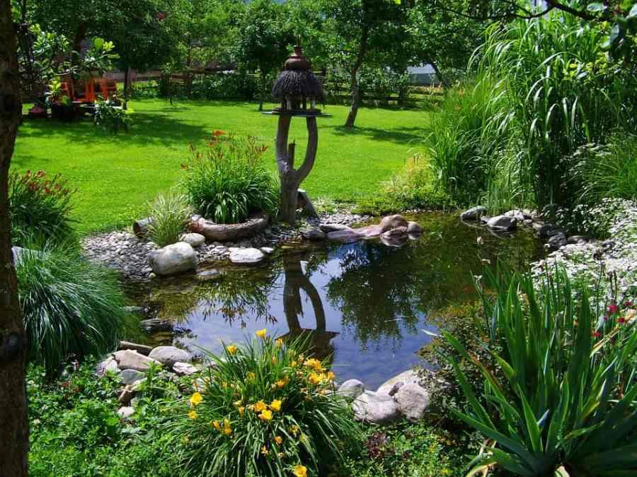 garden-pond-823722_960_720