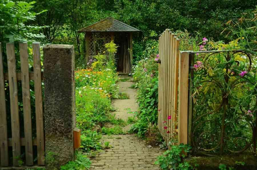 garden-910946_1280