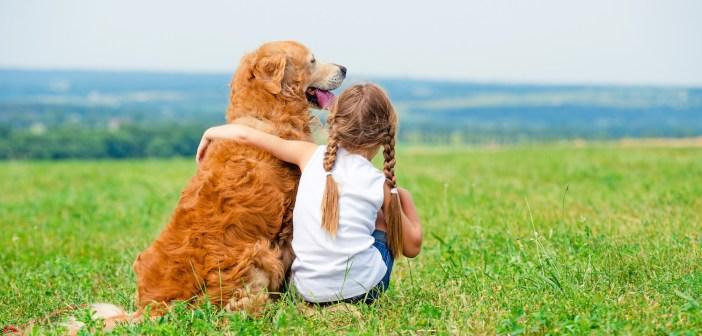 מסלולי טיול עם כלבים