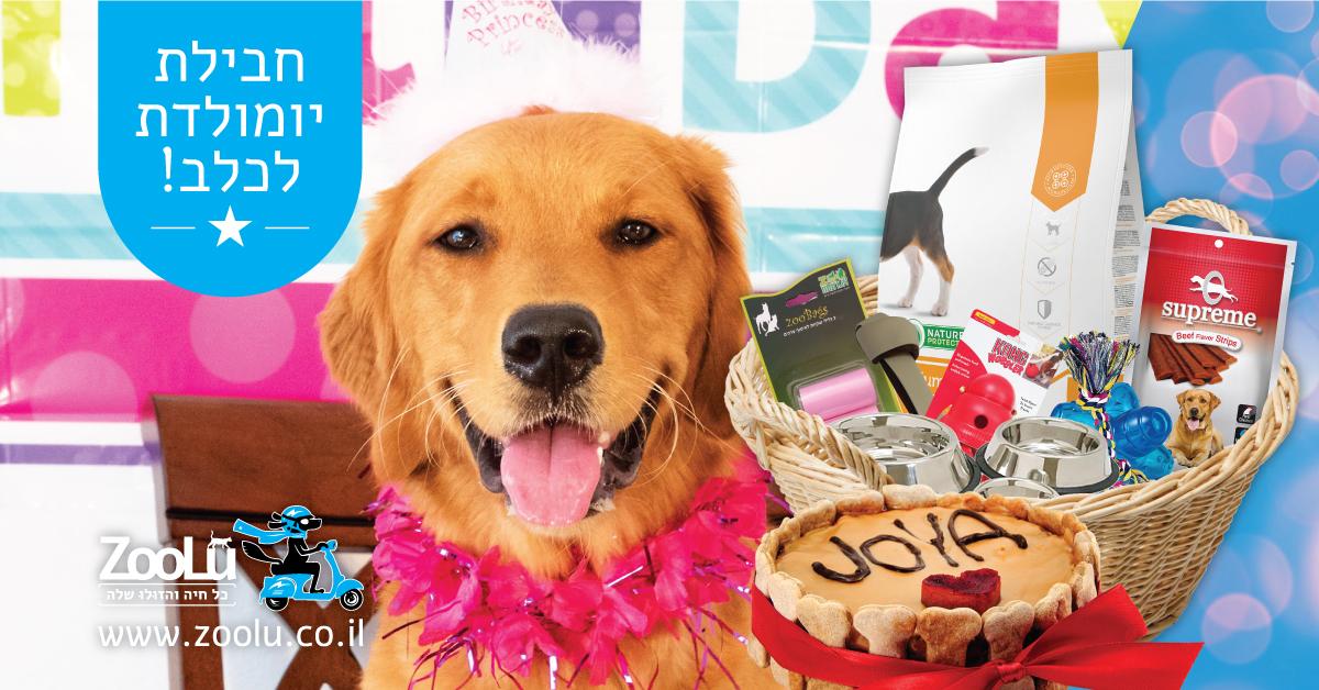 זולו מציעה חבילות מפנקות ליום הולדת של הכלב