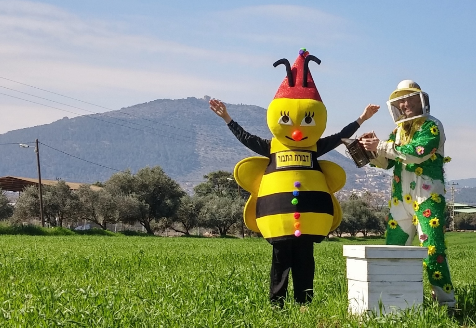 מועצת הדבש מזמינה להתחפש לדבוראים ודבורים- צילום דבורת התבור