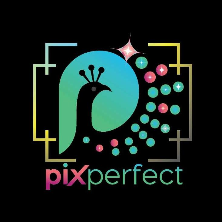 Pix Perfect (Educational Supplies for Babies)
