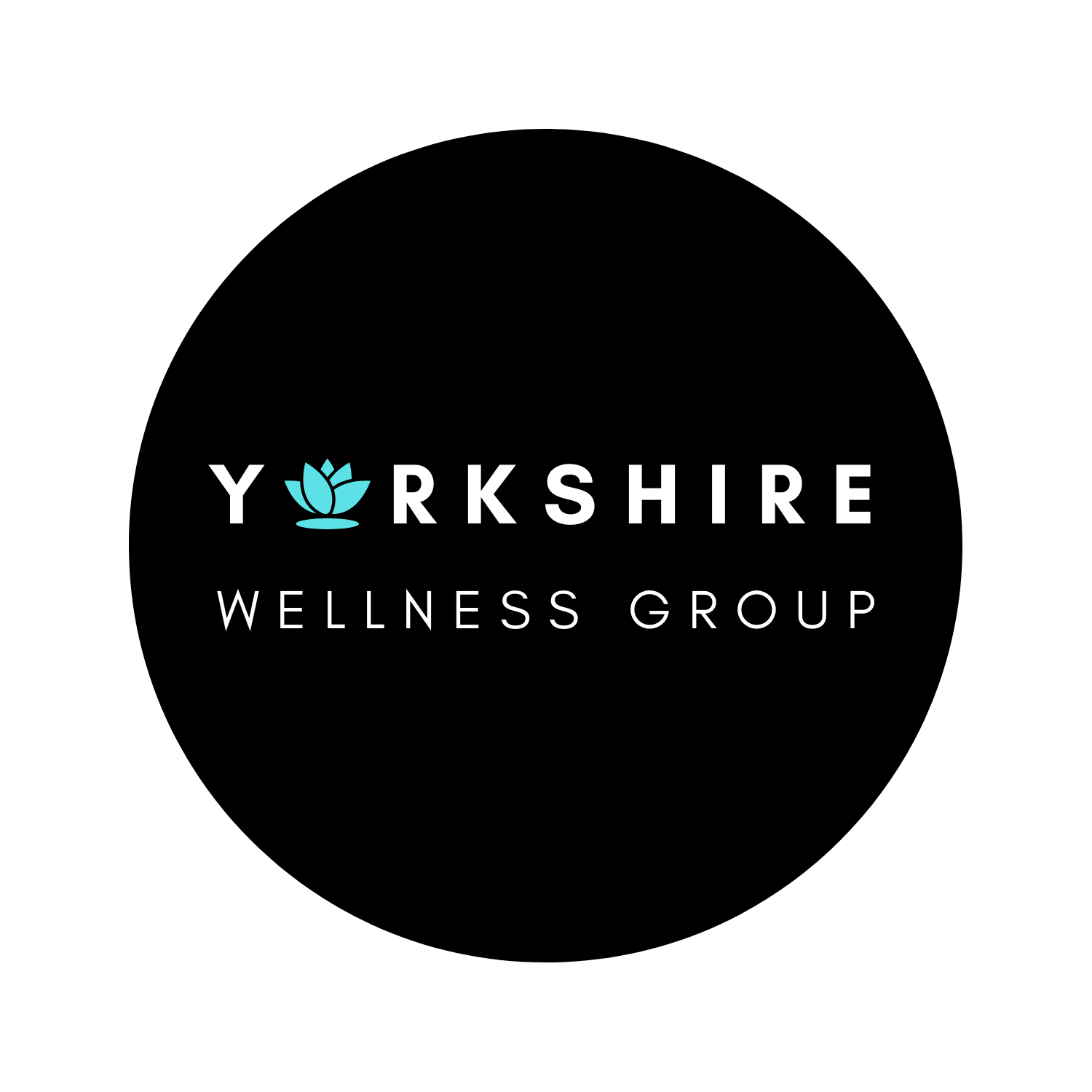 Yorkshire Wellness Group, Corp – telehealth and primary care services