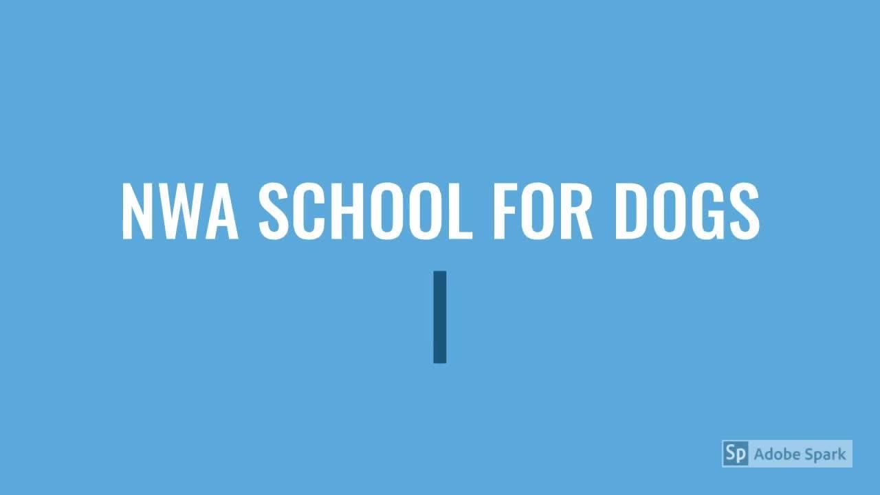 NWA School for Dogs – Dog training center Fayetteville Arkansas