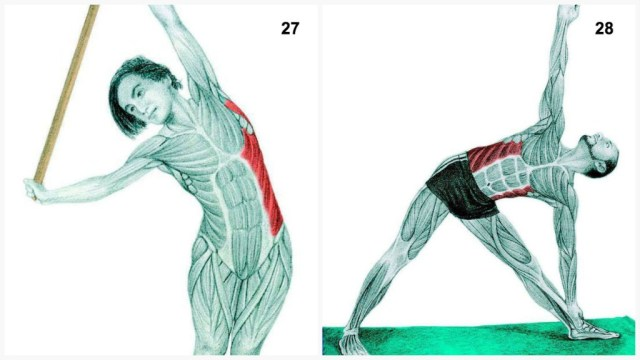The-Art-of-Stretching-13