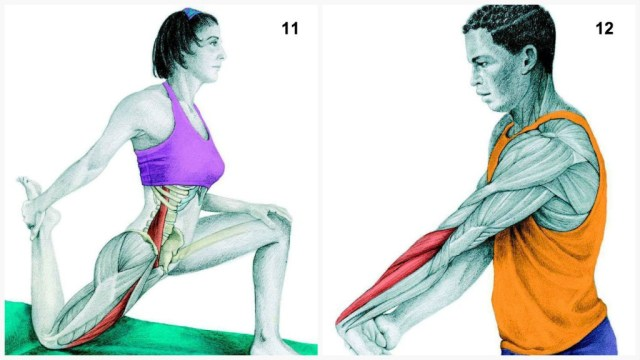 The-Art-of-Stretching-6