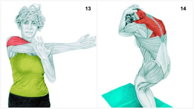The-Art-of-Stretching-7
