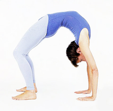 Yoga Asanas to Chiseled Arms