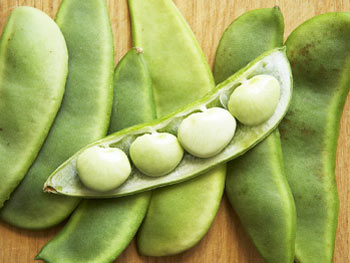 Lima beans  Top 10 Most Dangerous Fruits and Vegetables
