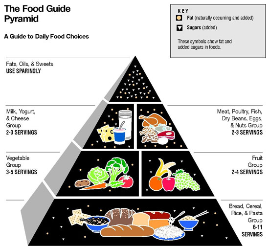 https://i0.wp.com/www.womenfitness.net/img2013/programs/food-pyramid.jpg
