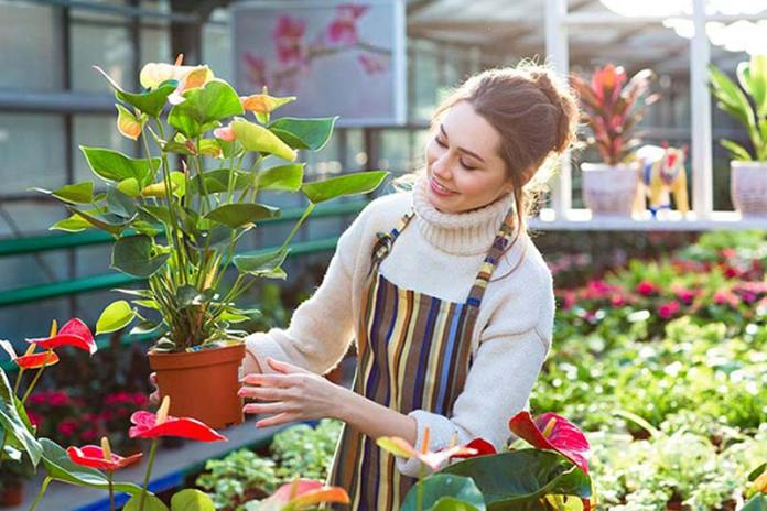 Why Vegetable Gardening Is Good For Your Health, health benefits of gardening, why gardening is good for your health, mental health benefits of gardening, environmental benefits of gardening, benefits of gardening essay, why gardening is important, physical benefits of gardening, emotional benefits of gardening, vegetable garden layout, planting vegetables in pots, vegetable garden plants, how to plant a flower garden for dummies, how to start a vegetable garden from scratch, vegetable garden tips, how to grow a small garden, garden vegetables list,