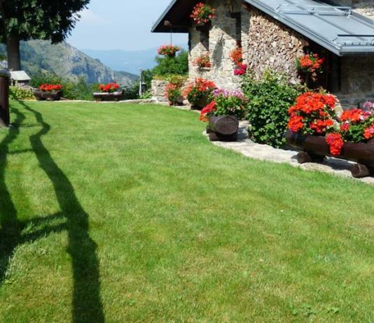 How to Get and Maintain a Healthy Lawn, how to get a green lawn without weeds, how to get a beautiful lawn, how to get a green lawn fast, how to make lawn green and thick, how to grow a healthy lawn, how to make your grass greener and thicker, tips for a nice lawn, how do i get my grass green?,