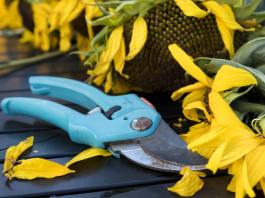 Top 17 Must Have Garden Tools Every Gardener Should Own, best garden gadgets 2017, vegetable garden gadgets, gardening gadgets for seniors, cool garden stuff, gardening gadgets tools, really cool garden stuff, garden gadgets for the elderly, high tech gardening tools,