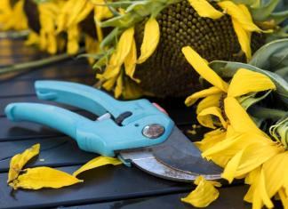 Top 17 Must Have Garden Tools Every Gardener Should Own, best garden gadgets 2017, vegetable garden gadgets, gardening gadgets for seniors, cool garden stuff, gardening gadgets tools, really cool garden stuff, garden gadgets for the elderly, high tech gardening tools,