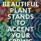 Spring garden plant stands