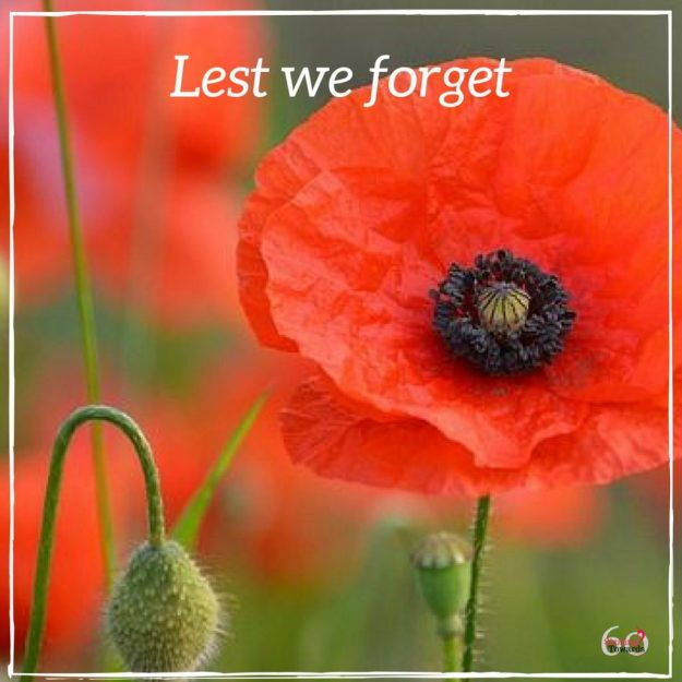 lest we forget remembrance day