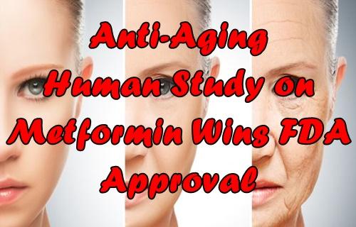 Anti-Aging Human Study on Metformin Wins FDA Approval |, Anti-Aging
