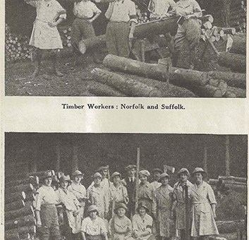 Photographs of Timber Corps in Norfolk. Source: The Landswoman, February 1918, page 26.