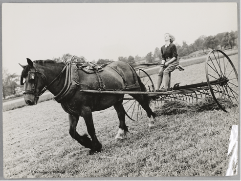 Iris Joyce learns to drive the hay making chariot Source: D8805, Northamptonshire Record Office. Courtesy of Dr David Wilson.
