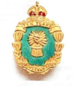 10 Year Women's Land Army Badge (1949)