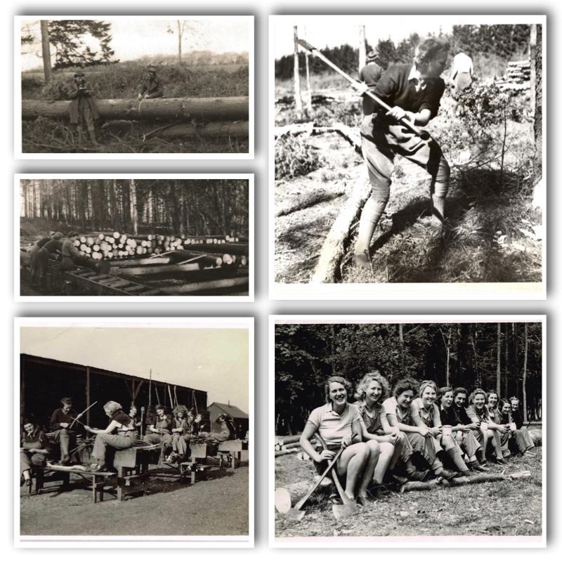 Women's TImber Corps