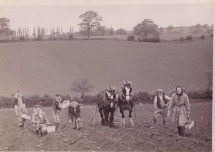 Land Girls of Battina Hous, working in the fields.