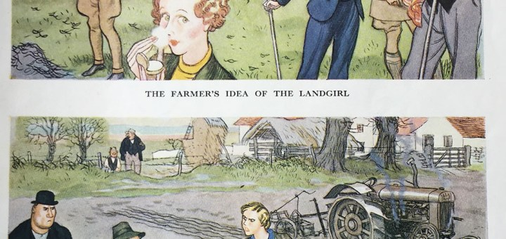 The Farmer's Idea of a Land Girl