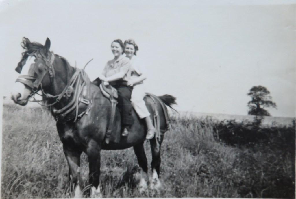 Dorothy Platts at rear of farm shire-horse, 1944, Wykeham. Land Army.