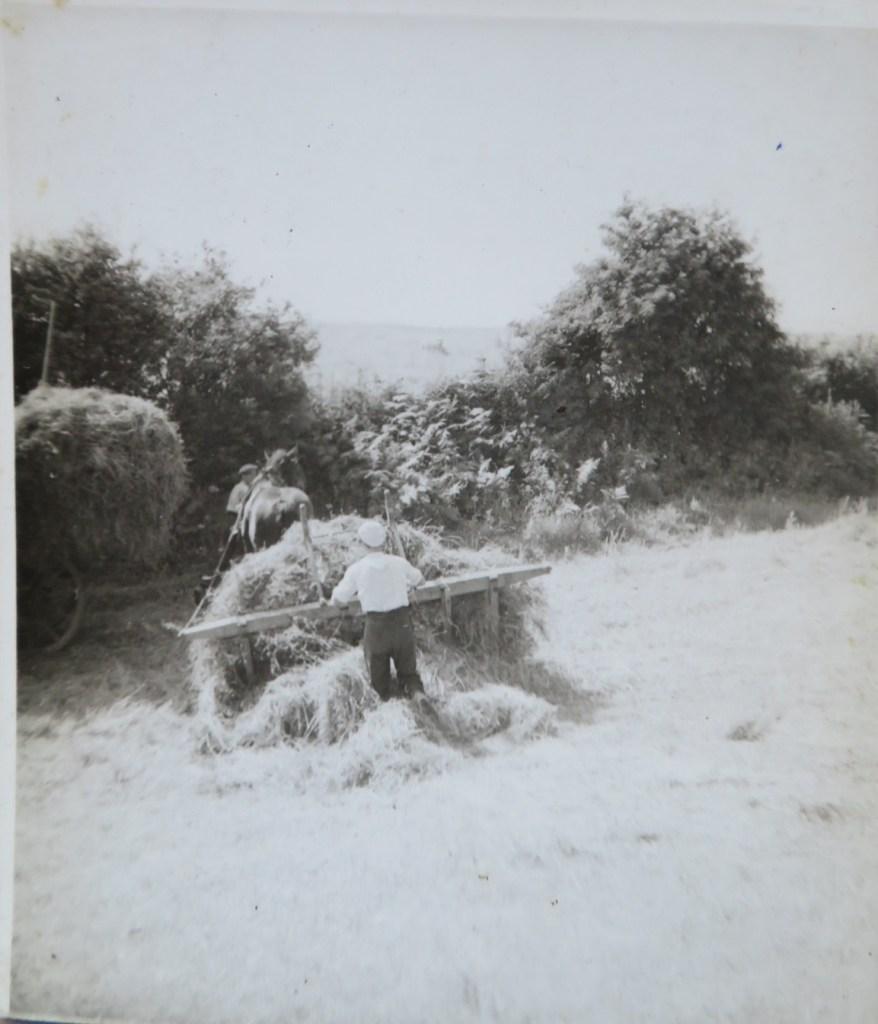 Wykeham Grange Farm,(Date?) Hay time, Land Army.