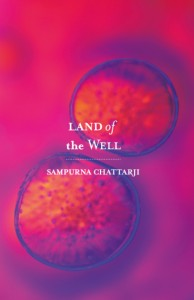 Book review of Sampurna Chattarji's Land Of The Well