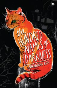 hundred names of darkness nilanjana roy