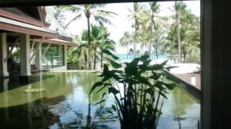 The lotus pond at the resort and a glimpse of the sea