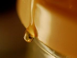 Add honey to diet