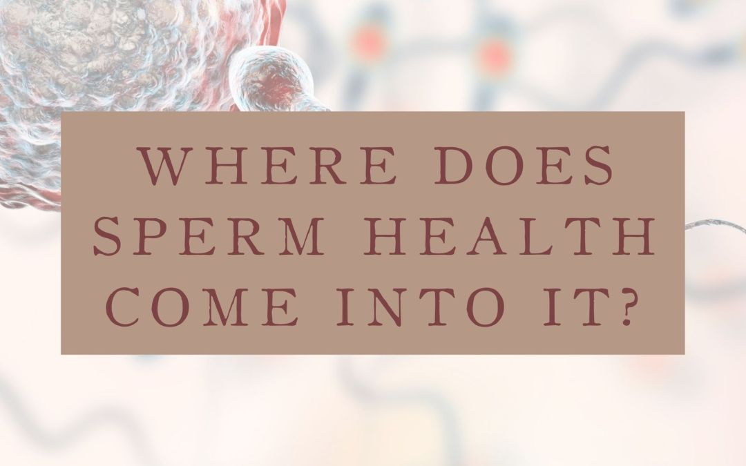 The drastic drop in sperm count and quality and how to get your man on board for generational change!