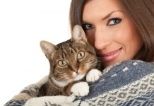 Things to remember for new cat owners