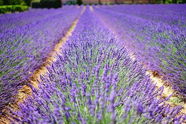 Mit dem Wohnmobil in die ostwestfälische Provence