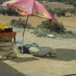 Arganöl vom Bauern