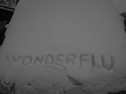 WONDERFLU