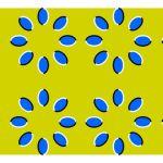 eye illusions
