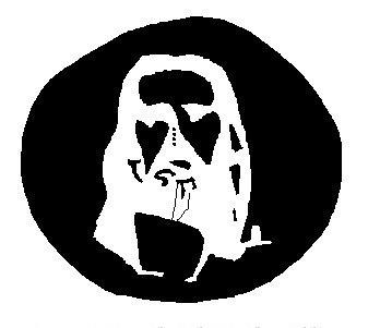 Jesus optical illusion