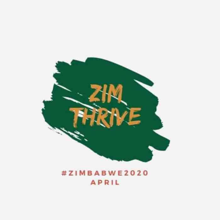 ZimThrive Logo