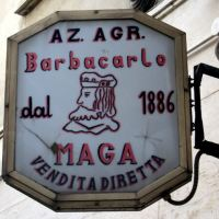 I Silenzi del Commendator Lino Maga